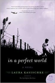 inaperfectworld